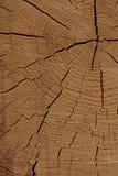 La texture en bois a fendu les lignes beiges vieille conception extérieure naturelle extérieure rustique photographie stock