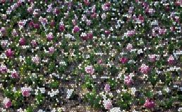 La texture en verre souillé d'un champ des tulipes fleurissantes images libres de droits