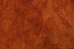 La texture est une peau Image stock