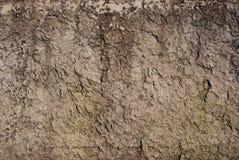 La texture gravée en relief brune sinistre Photo stock