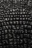 la texture métallique aiment le cuir de peau de crocodile images libres de droits