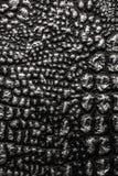la texture métallique aiment le cuir de peau de crocodile photographie stock