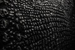 la texture métallique aiment le cuir de peau de crocodile photo stock