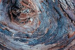 La texture riche du bois superficiel par les agents, avec des fissures et des couleurs de terre photo libre de droits