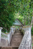 Temple dans la jungle Photo stock