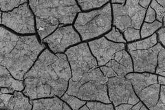 La tierra con las grietas Imagen de archivo libre de regalías