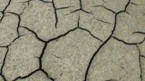 La tierra estéril seca es seca y almacen de metraje de vídeo