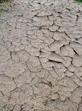 La tierra seca Foto de archivo libre de regalías