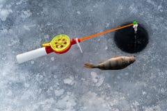 La tige pour la pêche d'hiver Images stock