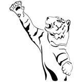 La tigre adulta con la sua zampa ha tenuto il livello su Fotografie Stock