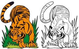 La tigre maestosa Illustrazione di Stock