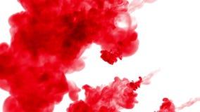 La tinta roja se separa en agua de arriba a abajo en un círculo, en un fondo blanco como mate del luma del uso del canal alfa 2 libre illustration