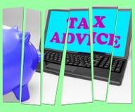 La tirelire de conseil d'impôts montre donner un avis professionnel sur l'imposition Images libres de droits