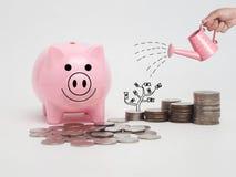 La tirelire rose a rempli de pièces de monnaie sur le fond blanc Enregistrer I Images stock
