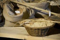 La toile à sac met en sac avec la texture, les graines et le maïs, blé Photos libres de droits