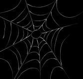 La toile de l'araignée Photographie stock