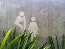 La toilette invita questo modo Immagine Stock