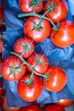 La tomate de groupe est un légume images stock