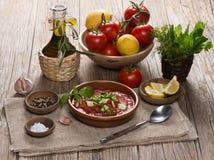 La tomate froide espagnole a basé le gazpacho de soupe servie dans un plat d'argile Photos stock