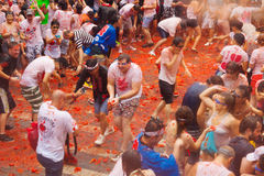 La Tomatina festival Stock Photos