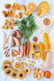 La tonalità arancio ha tonificato i prodotti freschi della raccolta Fotografia Stock Libera da Diritti