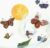 La torcedura de mariposas libre illustration