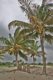 La tormenta próxima Foto de archivo