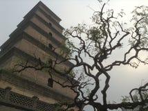La torre Cina delle oche immagini stock libere da diritti