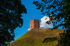 La torre di Gediminas Fotografia Stock Libera da Diritti