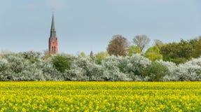 La torre di St Martin ed il municipio si elevano in Nienburg fotografie stock