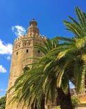 La torre dorata - uno dei punti di riferimento fotografati di Siviglia, come ? posizionata prominente ad un'ampia passeggiata vic fotografie stock