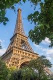 La torre Eiffel attraverso gli alberi Fotografia Stock Libera da Diritti