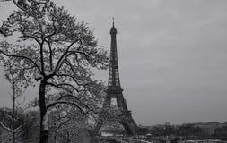 La torre Eiffel blanco y negro con los árboles desnudos en invierno, París, Francia Imagenes de archivo