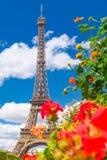 La torre Eiffel y las flores en un día hermoso del sumer en París fotos de archivo libres de regalías