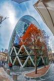 La torre famosa del pepinillo con el árbol ornamental en la calle Londres Foto de archivo libre de regalías