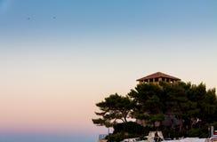 La torre sube de los árboles de pino en la puesta del sol Fotos de archivo
