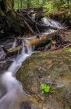 La torrente montano in sorso cade parco di stato Fotografie Stock Libere da Diritti
