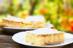 La torta crema tradizionale ha riempito di crema gialla del budino immagine stock libera da diritti