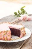 La torta de chocolate adorna con mantequilla poner crema rosada y suga colorido Imagen de archivo
