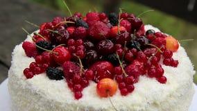 La torta de la fruta con el coco forma escamas con las bayas de la jalea Torta de la jalea de fruta Baya, torta de cumpleaños Obr