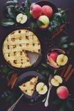 La torta di mele americana di tradizione con le mele, il mirtillo e la cannella ha decorato le foglie della mela fotografia stock libera da diritti