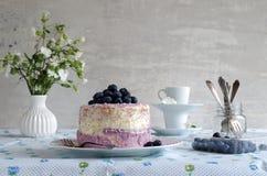 La torta di mirtillo con formaggio cremoso e la noce di cocco si sfaldano Immagine Stock Libera da Diritti