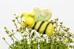 La torta hace estallar en forma de la abeja Fotos de archivo libres de regalías