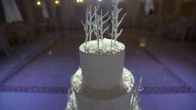 La torta hermosa se coloca en el pasillo del banquete metrajes