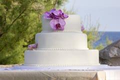 La torta nunziale Fotografia Stock Libera da Diritti