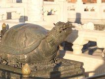 La tortuga es un símbolo de la longevidad y de la buena suerte Imagen de archivo libre de regalías