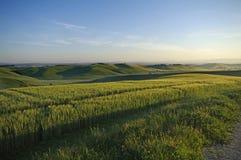 La Toscana Immagini Stock Libere da Diritti