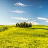La Toscana alla molla Fotografia Stock
