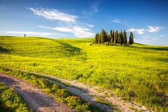 La Toscana alla molla Fotografie Stock