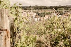 La Toscana - Hillside Vinyard che domina la città di Asciano immagini stock libere da diritti